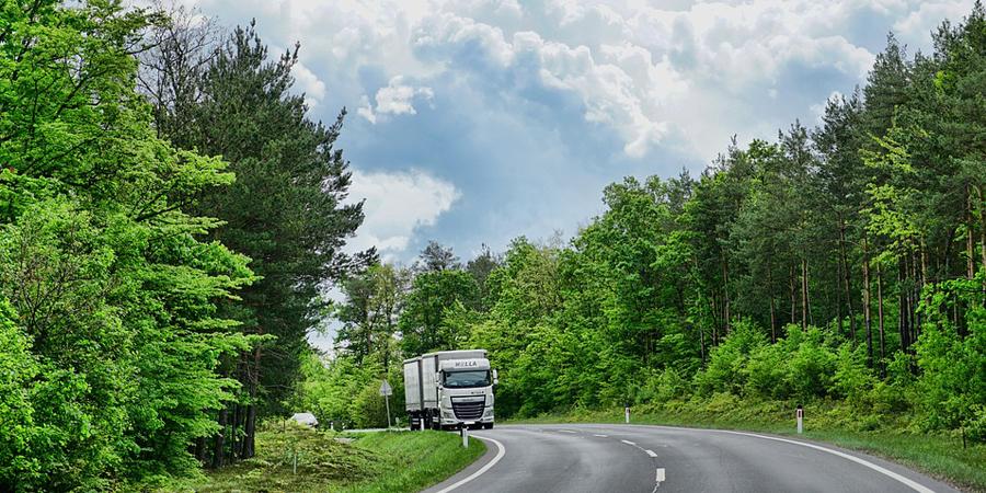 neumaticos para camiones y autobus profesionales
